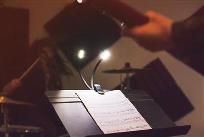 DuoFlex LED Music Light Kit